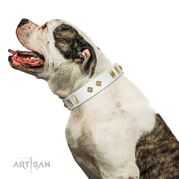 Easy wearing soft to touch full grain natural leather dog collar with decorations