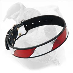 Decorative Buckled Collar With USA Flag Painting