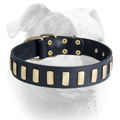 Riveted leather American Bulldog collar