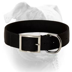 Durable Nylon Collar For Everyday Usage