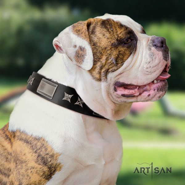 American Bulldog trendy full grain leather dog collar with decorations for comfortable wearing