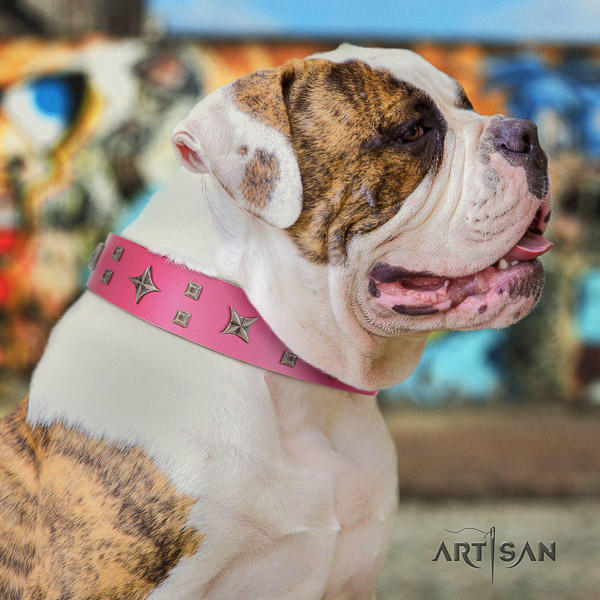 American Bulldog handy use full grain leather collar with incredible decorations for your dog