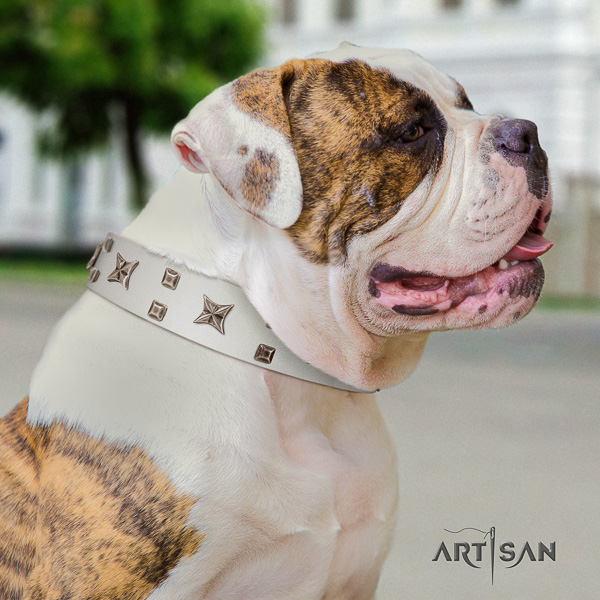 American Bulldog fancy walking leather collar with inimitable decorations for your doggie