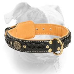 Securely riveted D-ring for Nappa padded American Bulldog collar