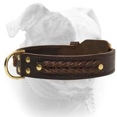 American Bulldog Braided Decorative Leather Collar