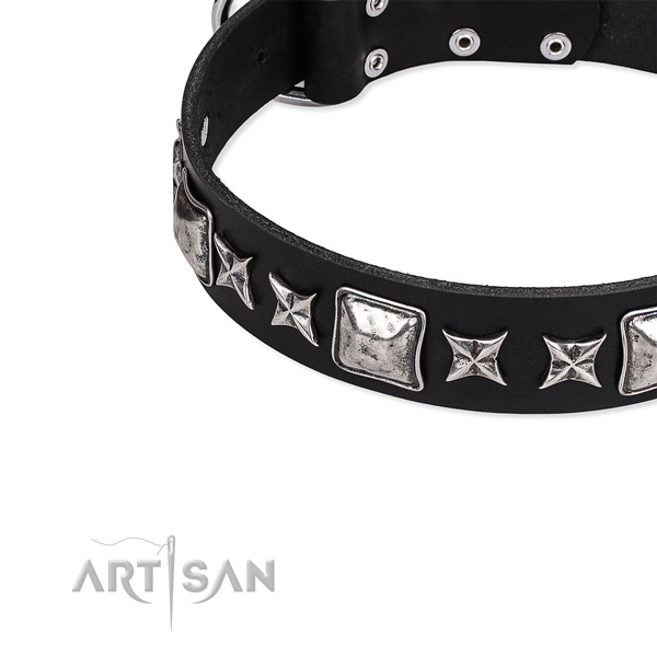 Full grain natural leather dog collar with stunning embellishments