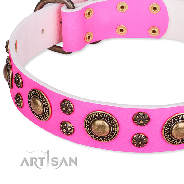 Natural genuine leather dog collar with amazing studs