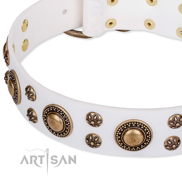 Leather dog collar with stunning adornments