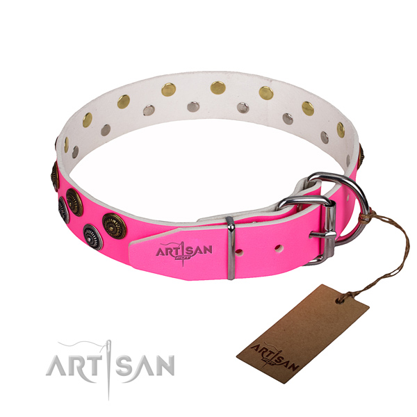 Daily use full grain natural leather collar with decorations for your canine