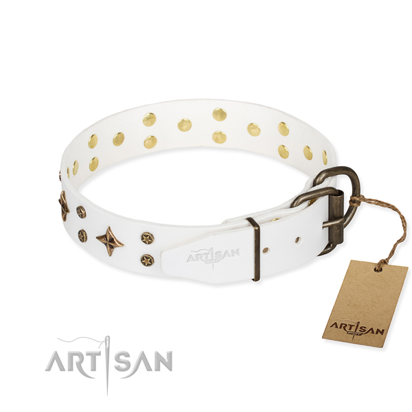 Everyday walking genuine leather collar with adornments for your dog
