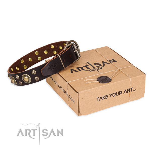 Awesome full grain genuine leather dog collar for walking in style
