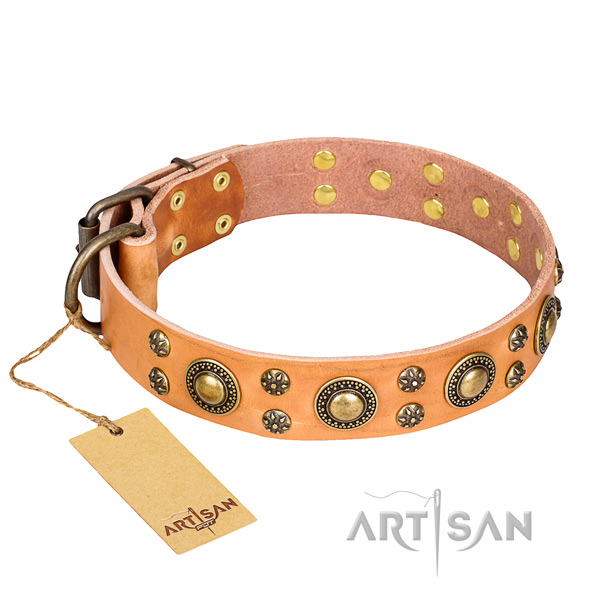 Unique genuine leather dog collar for daily walking