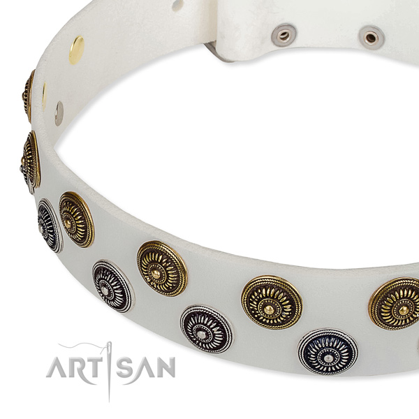 Genuine leather dog collar with exceptional adornments