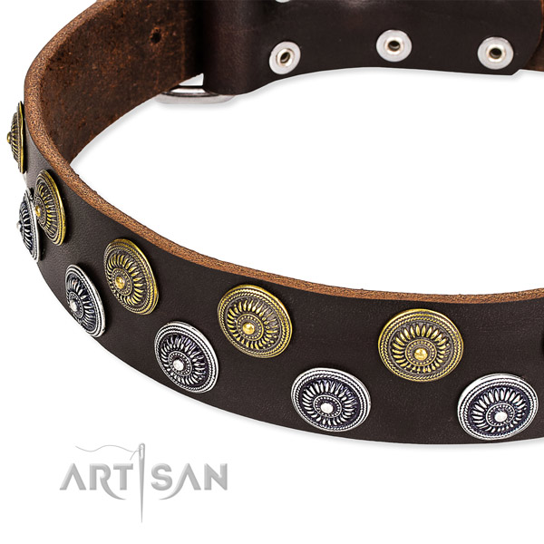 Genuine leather dog collar with trendy embellishments