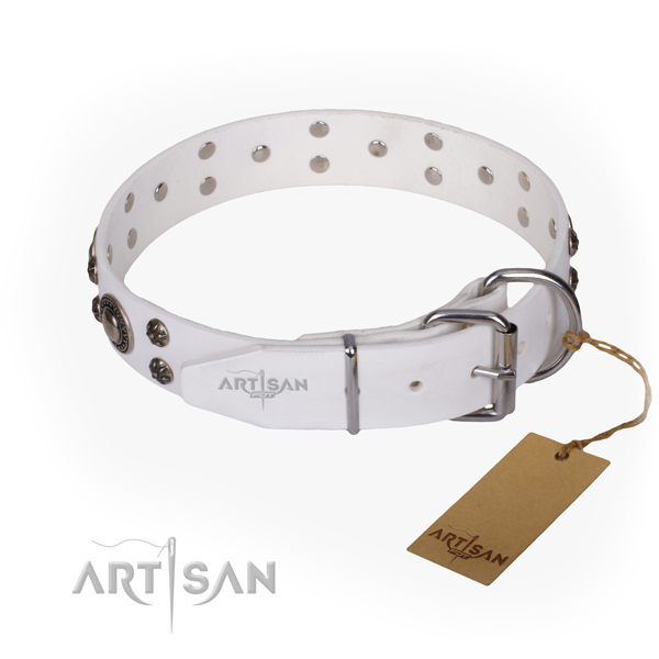 Everyday use leather collar with decorations for your dog