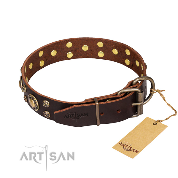 Walking full grain genuine leather collar with adornments for your canine