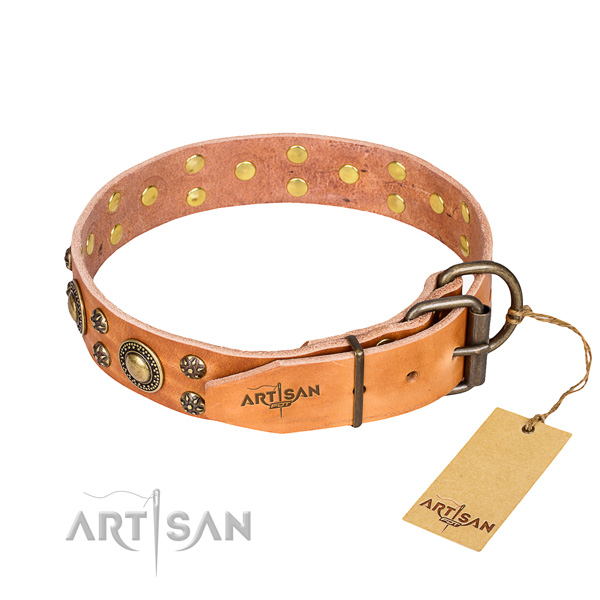 Everyday use full grain genuine leather collar with studs for your dog