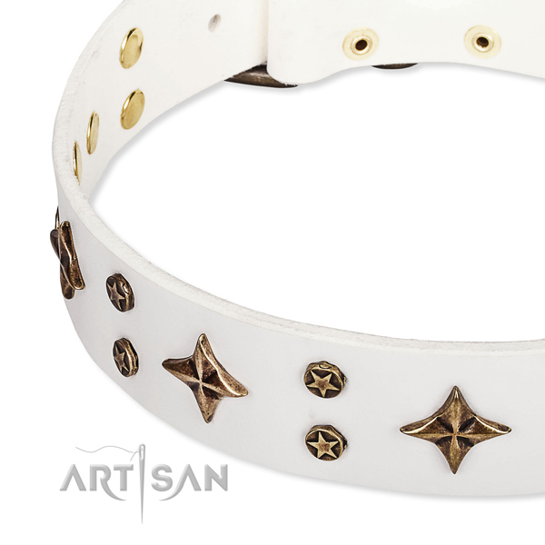 Full grain natural leather dog collar with awesome studs