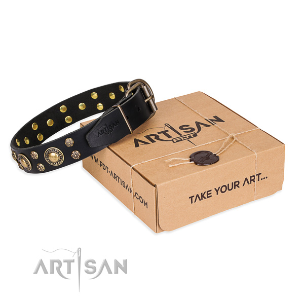 Finest quality natural genuine leather dog collar for stylish walking