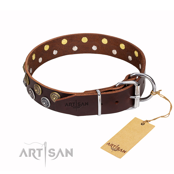 Amazing full grain leather dog collar for walking
