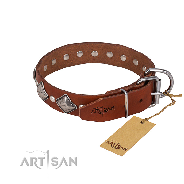 Dependable leather dog collar with reliable details