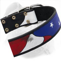 Leather Collar With American Symblos Decoration