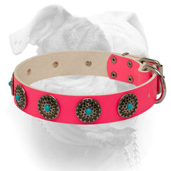 Luxury blue stones for pink leather American Bulldog collar