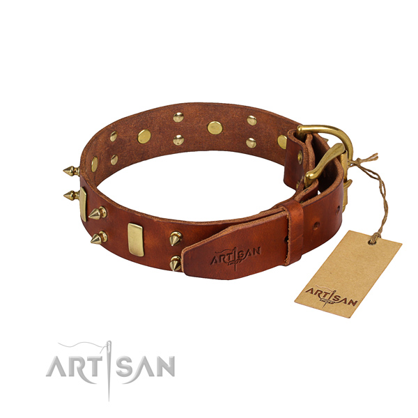Natural leather dog collar with smoothly polished exterior
