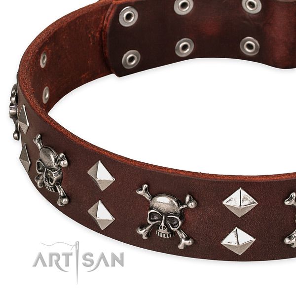 Top notch leather dog collar for training