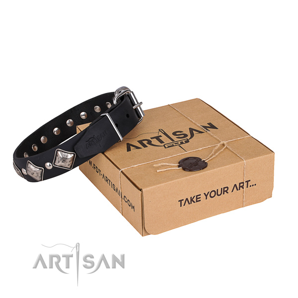 Casual style leather dog collar with astounding decorations