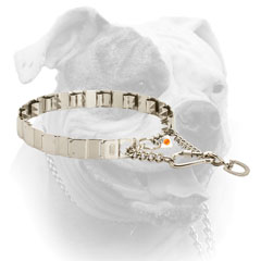 Stainless steel neck tech collar for American Bulldog