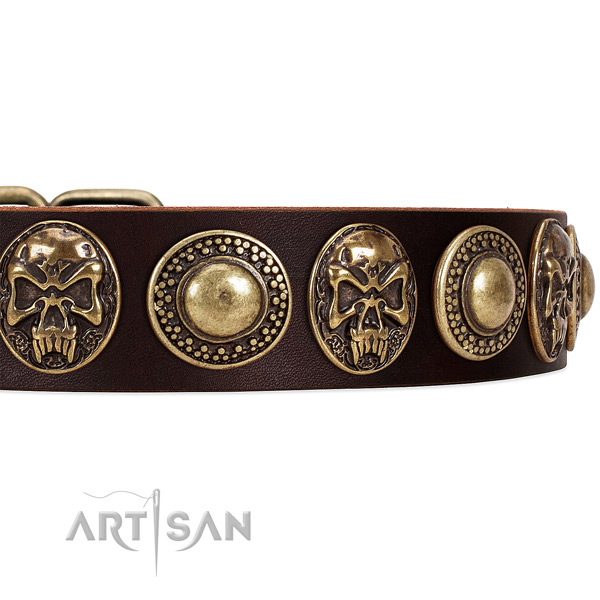 Leather dog collar with adornments for daily walking