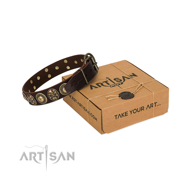 Adorned leather dog collar for everyday walking