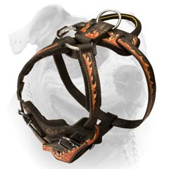 Agitation Leather Buckled Harness For American Bulldog
