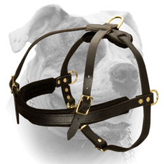 Easy Wearing Leather Dog Harness For Strong Breed