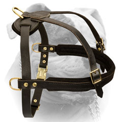 Free Moving Extra Comfort Leather Harness