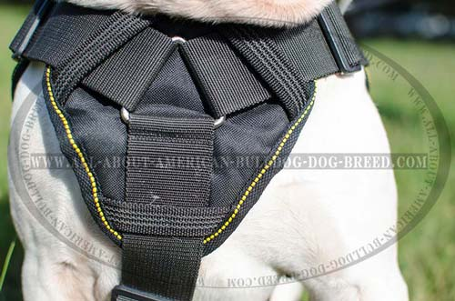 Nylon American Bulldog harness with cushion-like wide chest plate