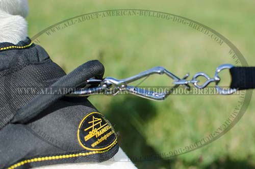 Reliable strong handle and nickel plated hardware for American Bulldog harness