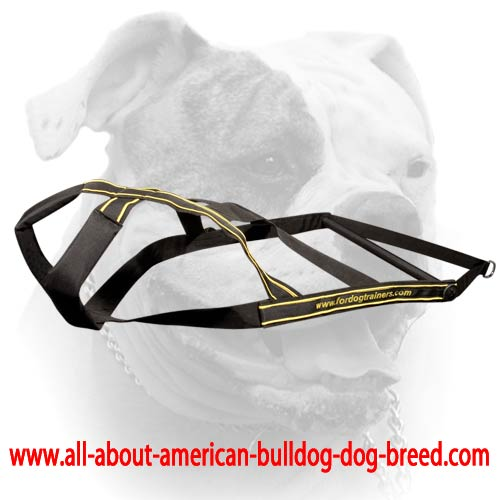 American Bulldog Weight Pulling Harness