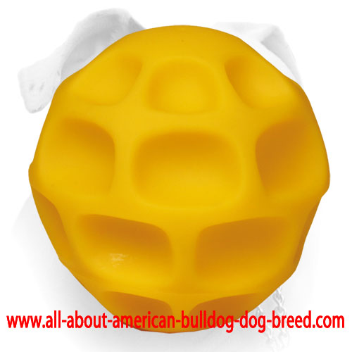 Honeycomb treat dispensing American Bulldog tetraflex ball - Large size