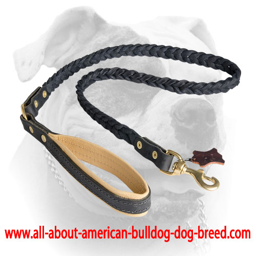 Decorative American Bulldog Leather Dog Leash