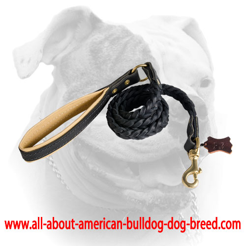 Handmade American Bulldog Leather Dog Leash
