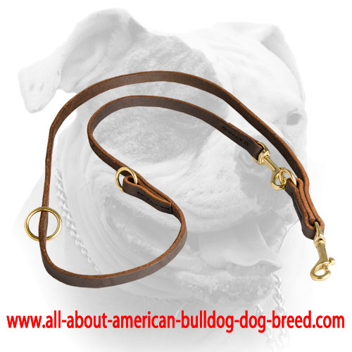 Snap hooks and O-rings help to change the length of this American Bulldog leash