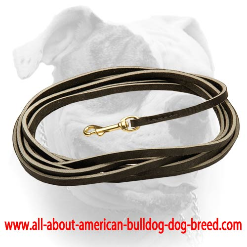 American Bulldog Extra Long Black Leather Dog Leash