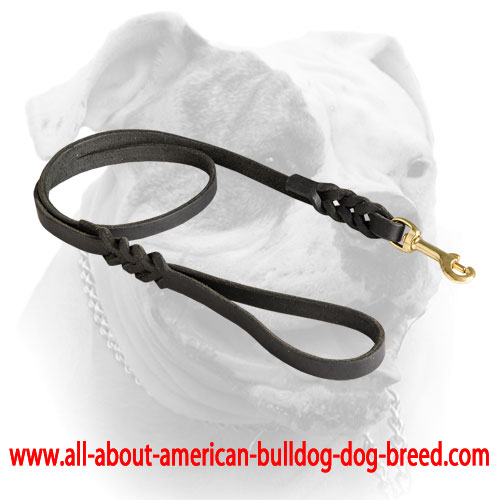 Brass snap hook for braided leather American Bulldog leash