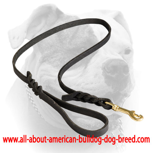 Braided genuine leather American Bulldog leash