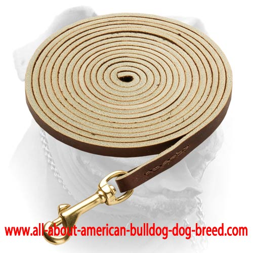 American Bulldog Brown Latigo Leather Dog Leash