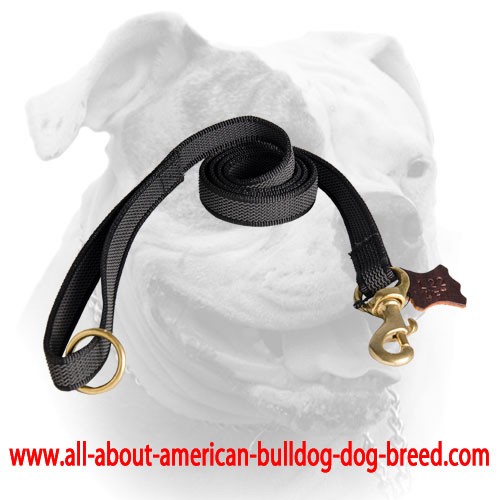 I-grip nylon leash with soft handle for American Bulldog
