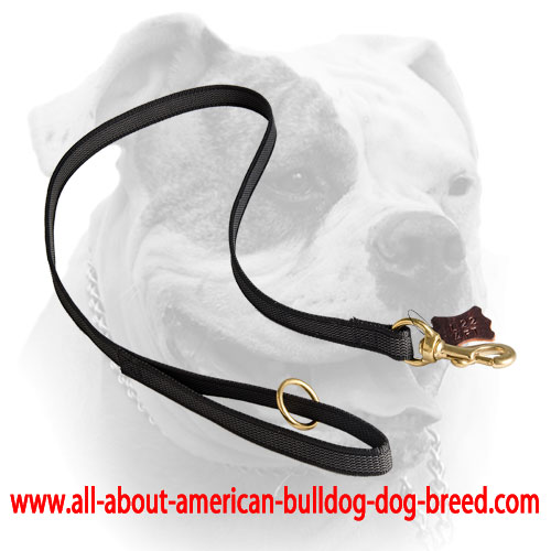 I-grip nylon American Bulldog leash with floating O-ring on the handle