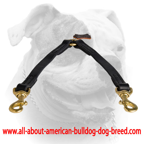 Leather coupler for walking two dogs
